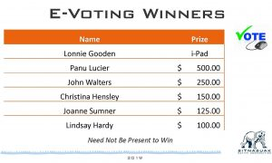 E-voting proxy prize winners 45th annual meeting